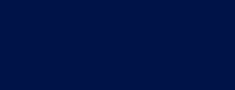 Donegal diaspora logo